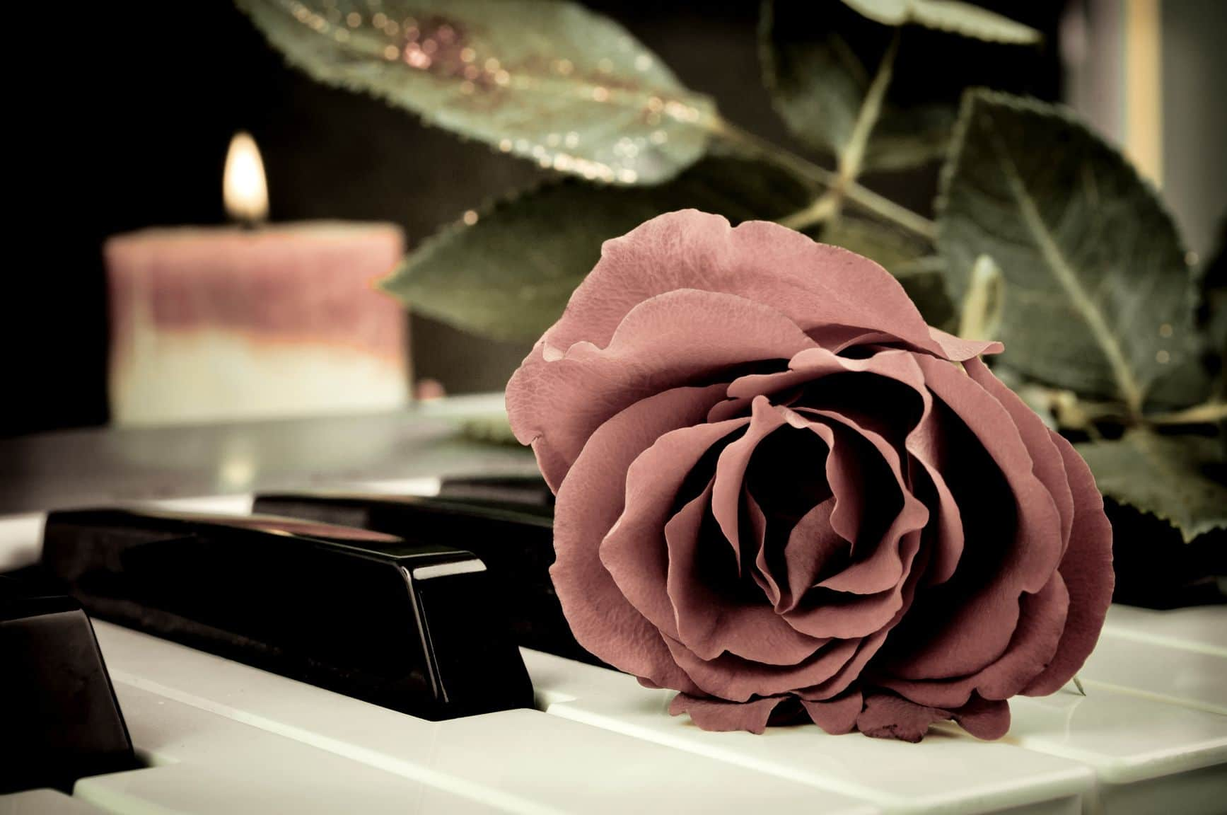 Red rose on the synthesizer keyboard and burning candle in the background