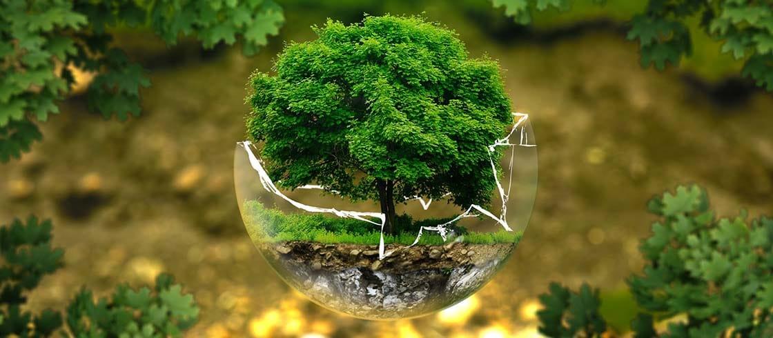 Environmental Protection 326923